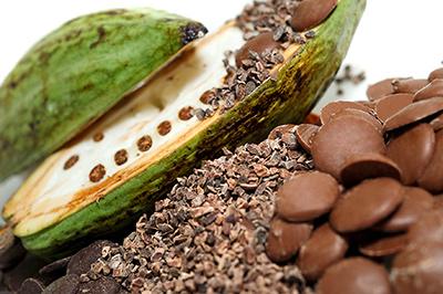 origines du cacao chocolat