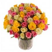 Roses Pastel'