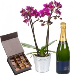 Orchidée, chocolats et champagne