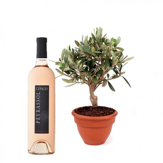 Olivier et Vin rosé
