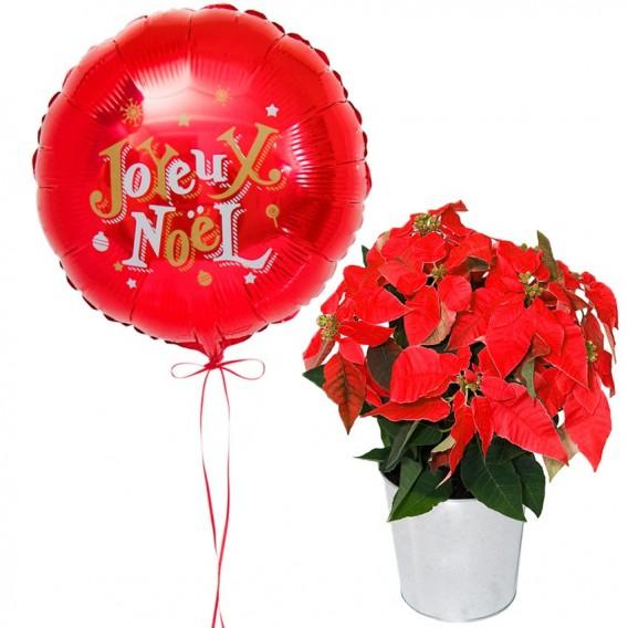 Ballon et Fleurs de Noël