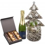 Roses, Chocolats et Champagne de Noël