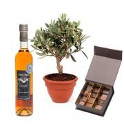 Chocolats, Olivier et Cognac