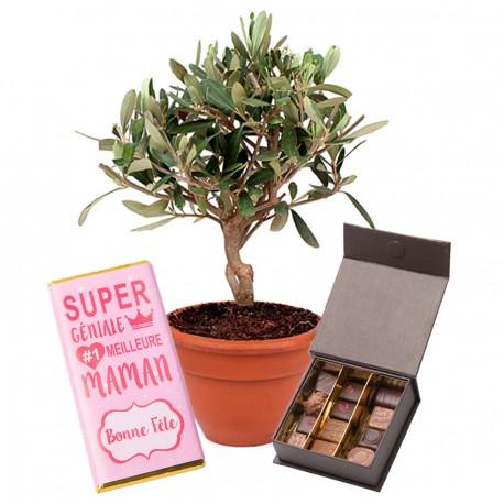 Olivier et Chocolats Fête des Mères