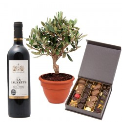 Chocolats Olivier et Vin