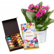 Fleurs, chocolats et tablette de pâques personnalisée