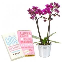 Orchidée et Chocolats