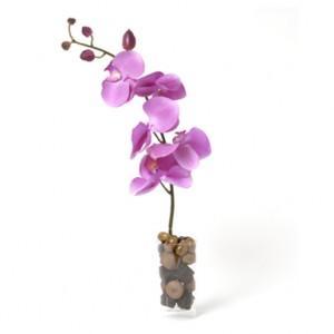 offrir-fleurs-chocolats