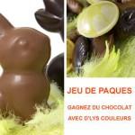 Jeu concours de Pâques : gagnez du chocolat !