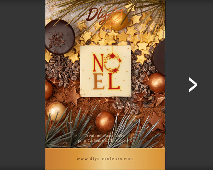 catalogue chocolat noel