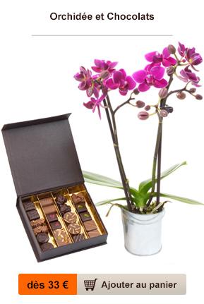 orchidée chocolat