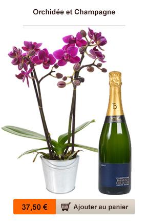 orchidee chocolat champagne